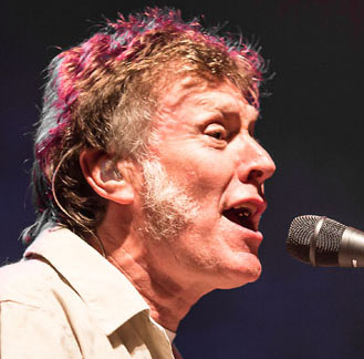 Steve Winwood's surprising late-career muttonchops.