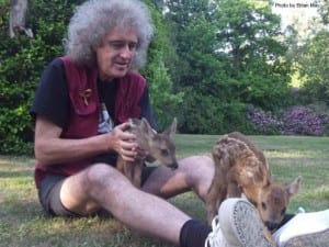 brian-may-with-animals_brianmay-com_